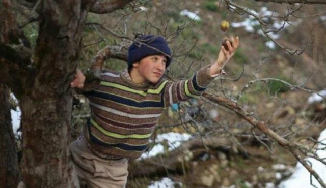 Oscar adayımız Kalandar Soğuğu filminin yönetmeni Kırmızı Halı'da
