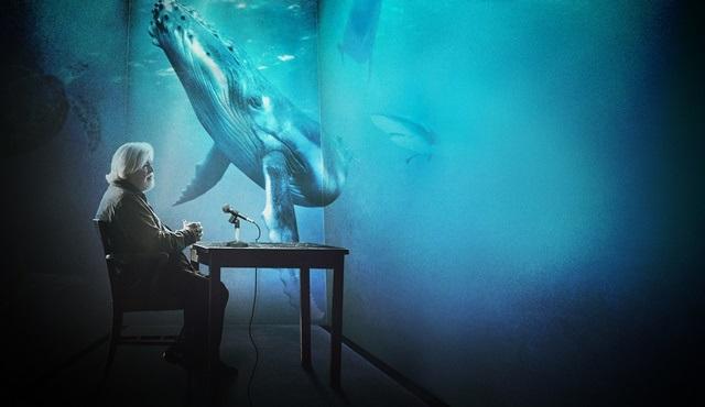 Okyanus Günü'nün 28. yıl dönümü Discovery Channel'da kutlanacak!