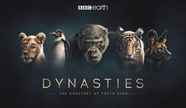 BBC Earth'ün yeni belgesel dizisi Soylar, 22 Kasım'da ekranlarda!