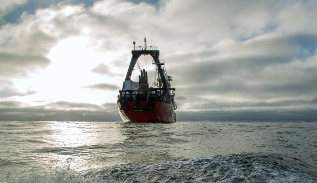 Sular Çekilince: Derin Dalış yeni bölümleriyle National Geographic ekranlarında!