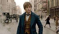 Fantastic Beasts and Where to Find Them 2 ne zaman vizyona girecek?