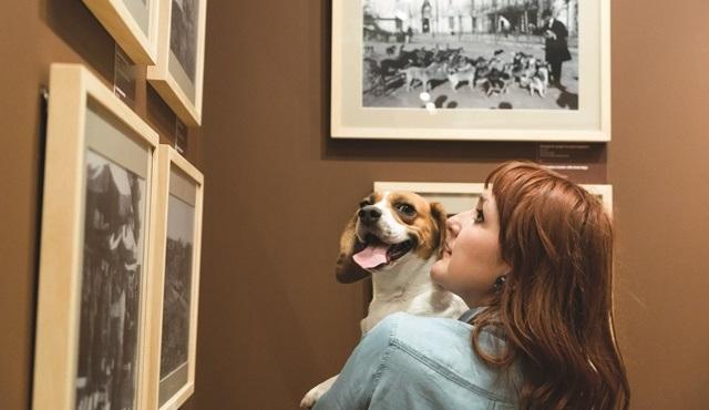 İstanbul Araştırmaları Enstitüsü, sizi köpeğinizle sergi gezmeye davet ediyor!
