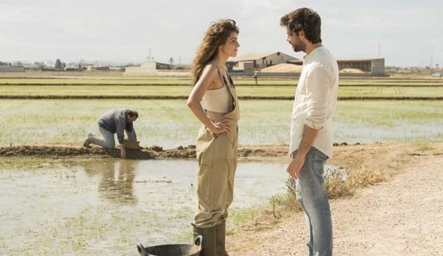 La Casa De Papel'in yaratıcısı Alex Pina'nin yeni dizisi The Pier'in tanıtımı yayınlandı