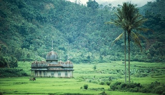 """Nat Geo Wild'dan tropikal bir serüven, """"Vahşi Yolculuk: Endonezya"""""""