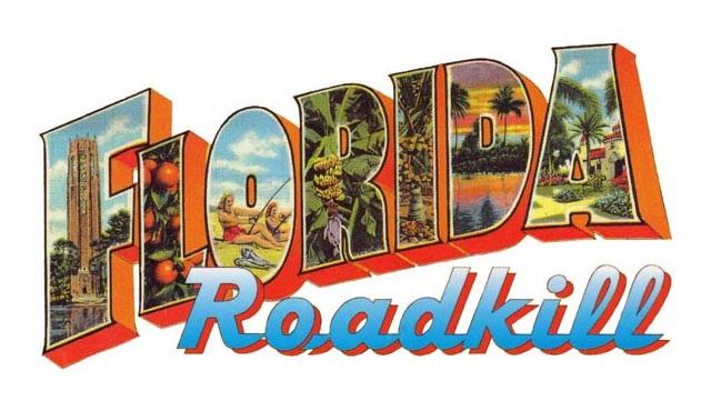 Florida Roadkill kitap serisi dizi oluyor