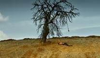 Nuri Bilge Ceylan'ın yeni filmi Ahlat Ağacı'nın tanıtımı yayınlandı