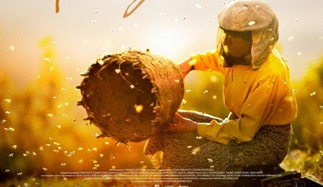 Oscar adayı belgesel Honeyland (Bal Ülkesi), Tv'de ilk kez TRT 2'de ekrana geliyor!