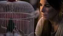 Netflix'in yeni filmi Bird Box'tan ikinci fragman geldi!