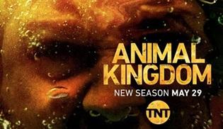 Animal Kingdom 3. sezonuyla 29 Mayıs'ta ekranlara dönüyor