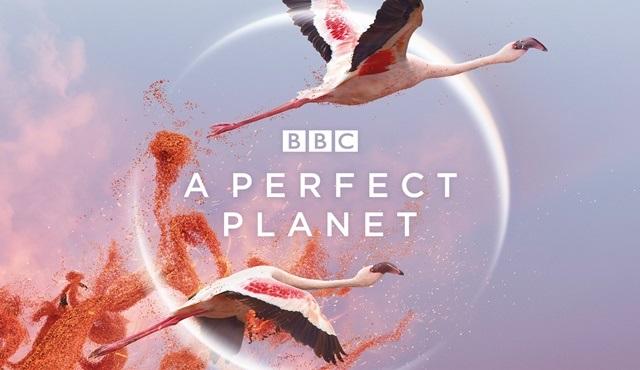 A Perfect Planet (Kusursuz Gezegen) belgeseli 4 Şubat'ta BBC Earth kanalında!