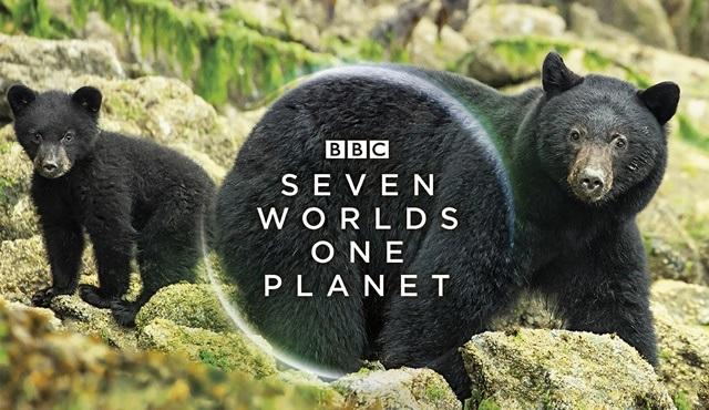 BBC yapımı Seven Worlds, One Planet belgeseli Emirates uçaklarında canlı gösterimde!