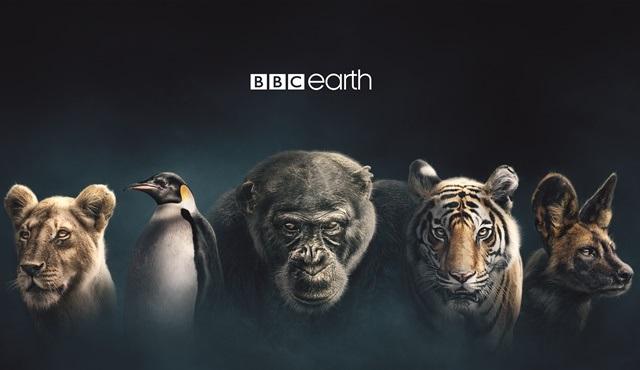 BBC Earth'ün çığır açan belgesel dizisi Soylar 17 Aralık'ta yeniden ekranlarda!