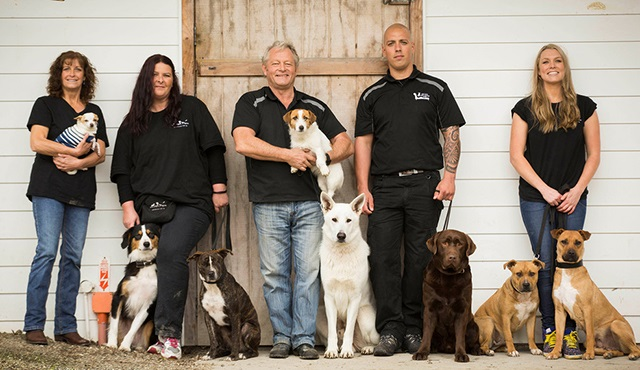 Minik Köpeciklerden Köpek Yıldızlara, Animal Planet'te!
