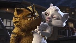 Tv'de ilk kez: Kötü Kedi Şerafettin filmi Kanal D'de ekrana gelecek!