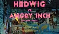 Hedwig ve Angry Inch: Yıkılası Duvarlar