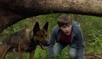 Cesur Köpek Max'ın macerası TV'de ilk kez Star Tv'de ekrana gelecek!