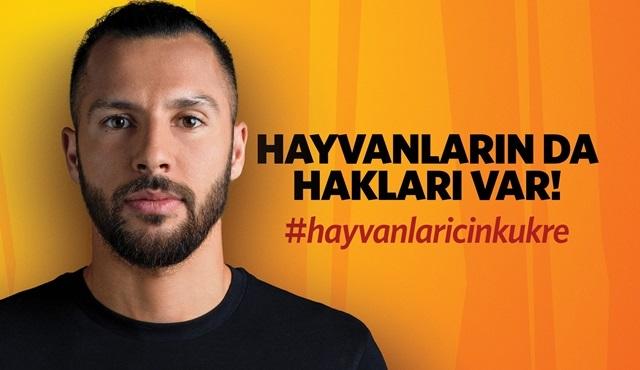 National Geographic ve Galatasaray herkesi hayvanlar için kükremeye çağırıyor!