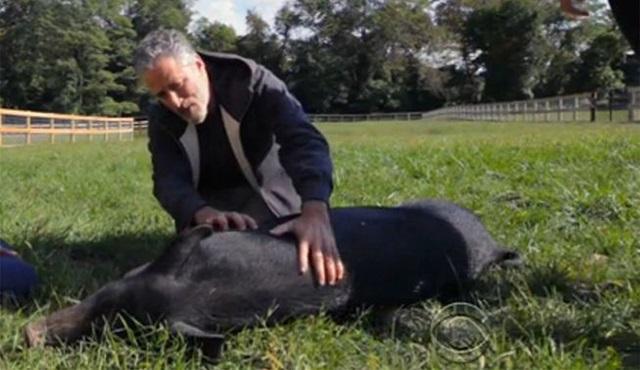 Jon Stewart komediyi bıraktı, hayvan hakları mücadelesine başladı