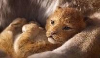 The Lion King: Bir neslin anatomisi