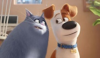 The Secret Life of Pets 2 geliyor