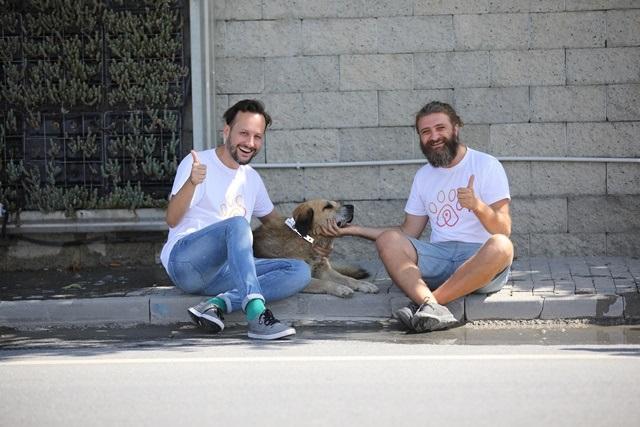 Pati Birliği, sokak köpekleri için gönüllüleri bir araya getirdi!