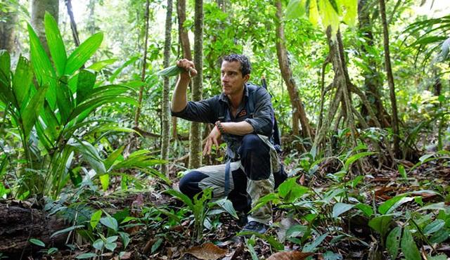 Bear Grylls: Görevimiz Hayatta Kalmak, Discovery Channel'da başlıyor