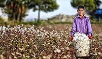 İz Tv, mevsimlik tarım işçilerinin öyküsü ekranlara taşıyor!