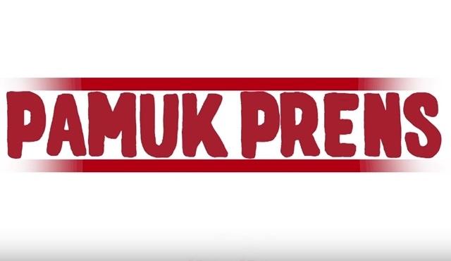 Tamer Karadağlı'dan yeni dizi: Pamuk Prens