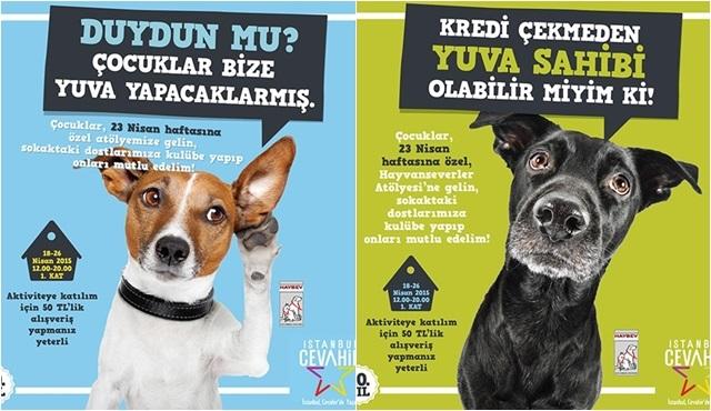 Cevahir'de 23 Nisan coşkusu sokak hayvanları için yardıma dönüşüyor!