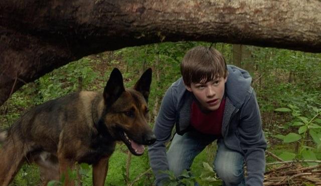 Cesur Köpek Max'ın macerası Star Tv'de ekrana gelecek!