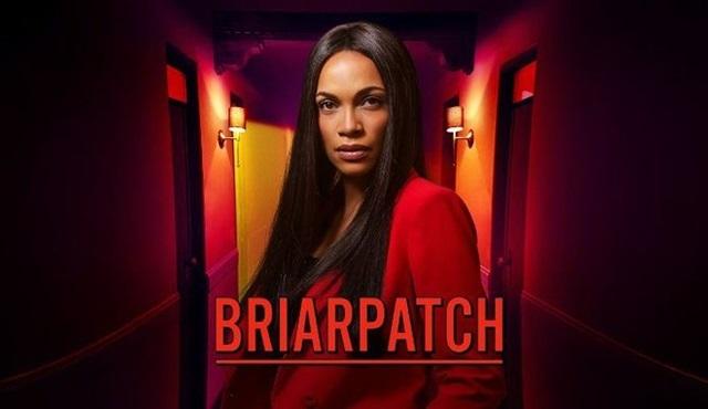 Briarpatch dizisi iptal oldu