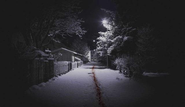 Netflix, İzlanda yapımı ilk dizisine de onay verdi: The Valhalla Murders