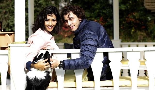 Boran Kuzum ve Aybüke Pusat, Şahin Tepesi'nde sokak hayvanlarına dikkat çekecek!