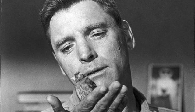 Cuma Sinema Kuşağı: 'Alcatraz Kuşçusu' (Birdman of Alcatraz)