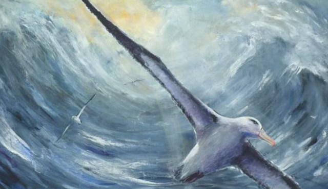 Reyting Analizi: Uçtu uçtu Erkenci Kuş uçtu!