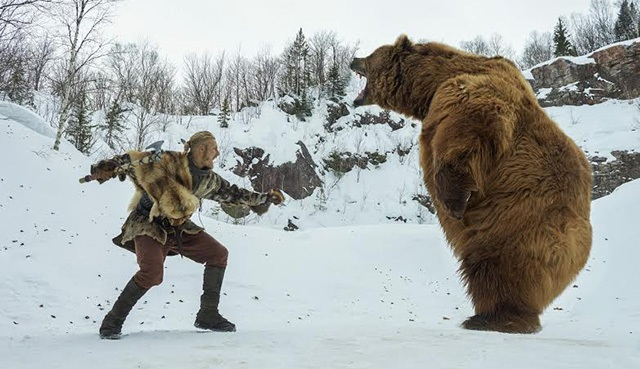 Vikings'in ayısı The Revenant'ın ayısına karşı!
