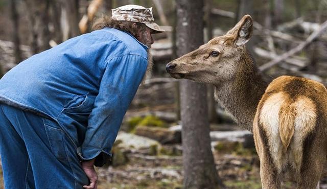 Yankı Ormanı, Animal Planet'te başlıyor