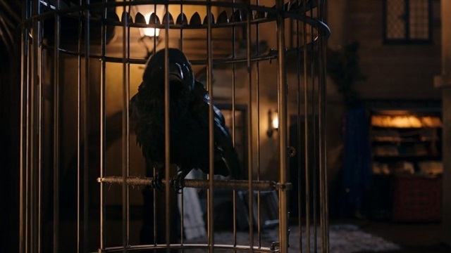 Ölüm kanatlarını çırptı..