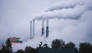Kömürün hikayesi