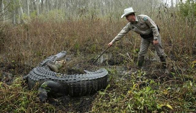 Teksas Kanunu Animal Planet'te Başlıyor