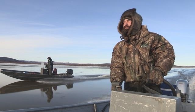 Alaska'nın vahşi doğasındaki hayat mücadelesi Nat Geo ekranlarında