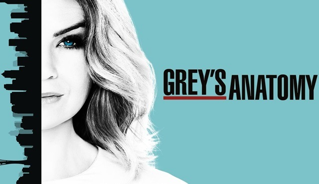 Grey's Anatomy: 13 sezonda neler yaşandı?