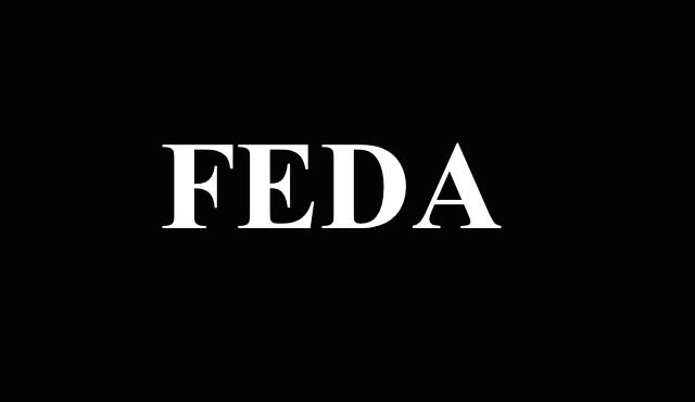 Osman Sınav'dan yeni proje: FEDA